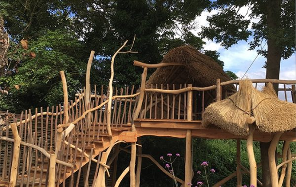Thatched Tree House