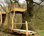 The Old Oak Tree House and Bridge